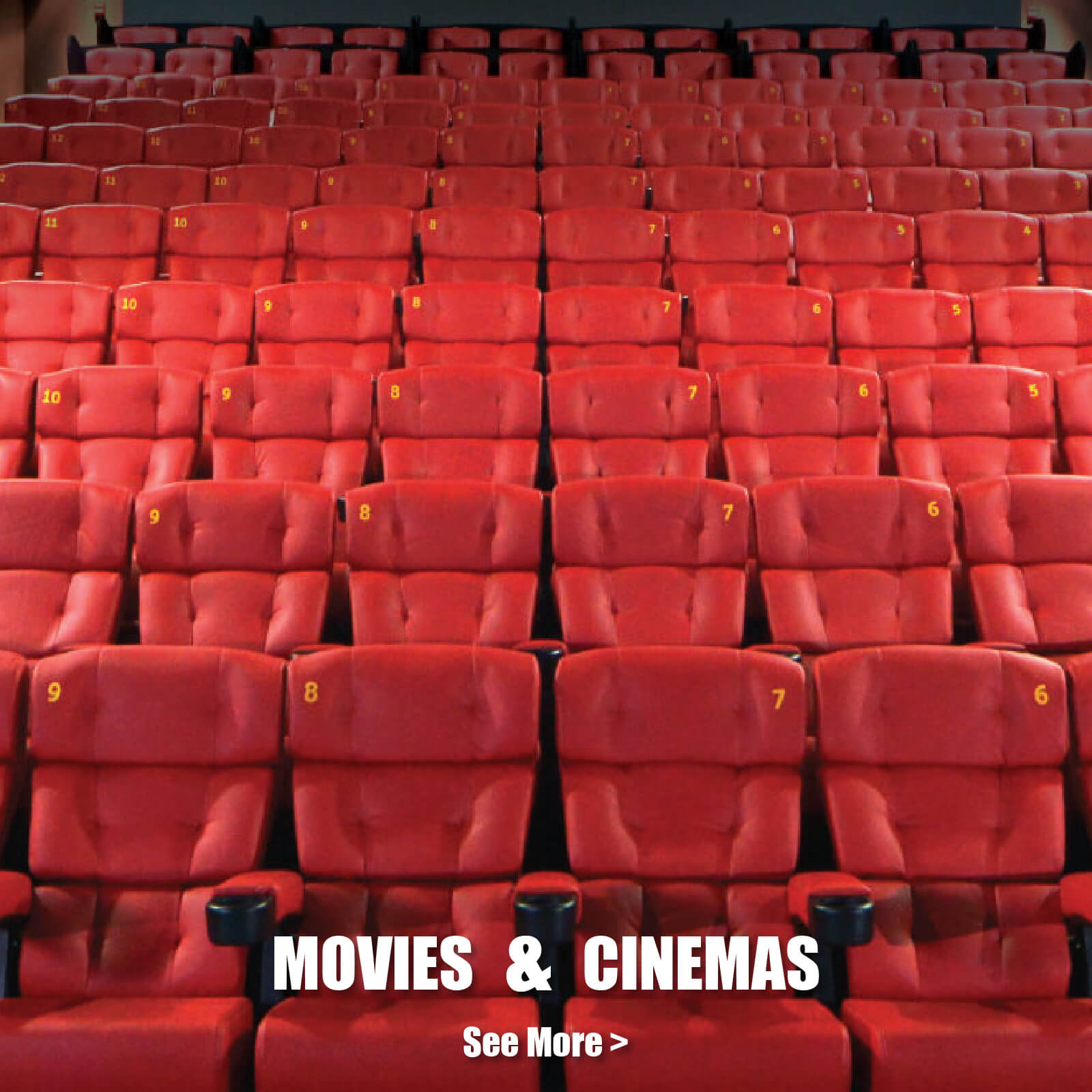 Movies and Cinemas Image - Our Businesses Section - Homepage